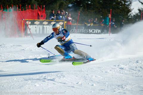 Downhill Skier