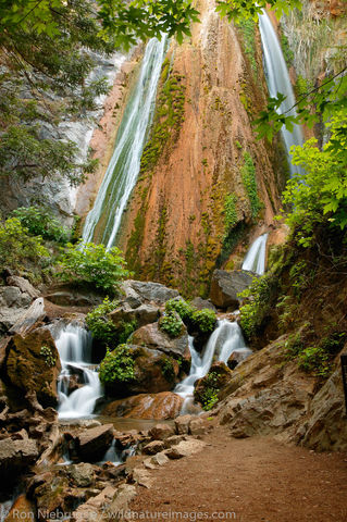 Limekiln State Park, photos
