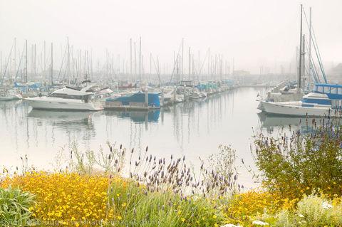 Marina, Monterey, California