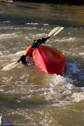 kayaking on the Rio Grande
