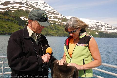 Sea Otter pelt