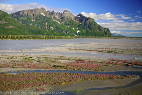 Copper River Delta