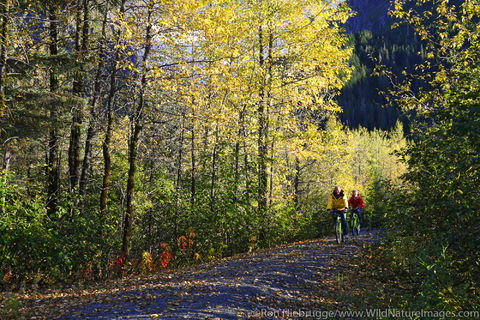 Biking in Portage Valley