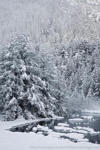 Portage Valley