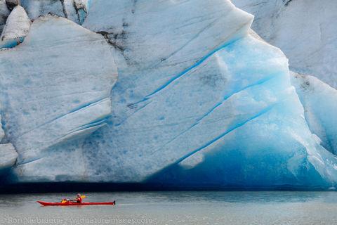 Kayaking at the Mendenhall Glacier