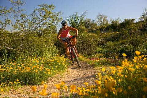Mountain Biking at McDowell