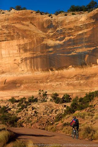 Biking in Canyonlands National Park