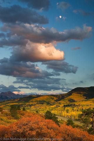 Autumn Colors, Colorado