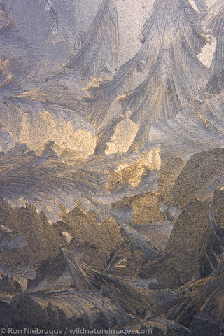Ice Patterns, Seward, Alaska