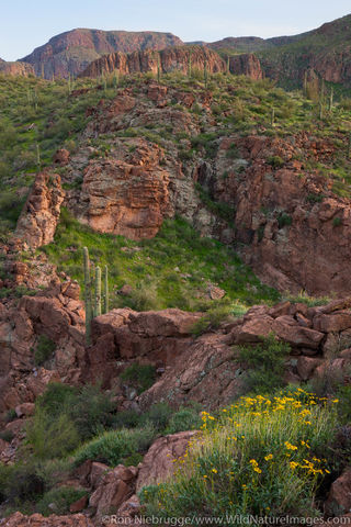 Superstition Mountains along the Apache Trail