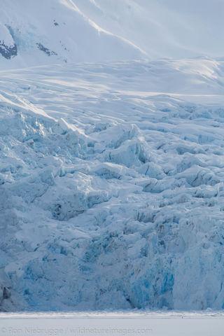 Nellie Juan Glacier
