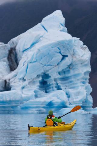 Bear Glacier Lagoon