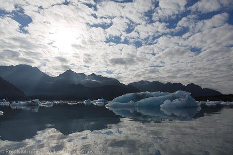 Icebers in Bear Glacier Lagoon