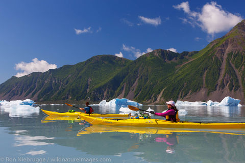 Paddling in Bear Glacier Lagoon
