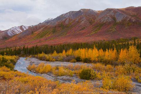 Arctic, Alaska, autumn