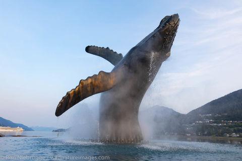 Whale statue