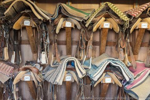 Saddle's