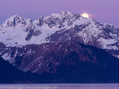 Mt. Alice Moonrise
