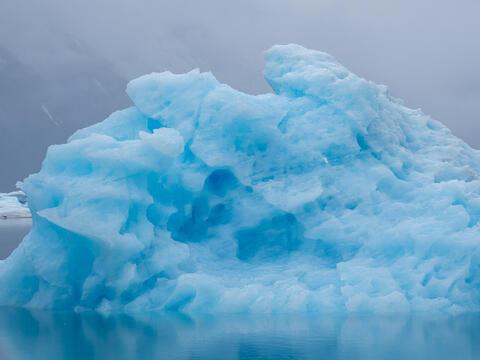 Alaska, Alaskan, Bear Glacier Lagoon, Kenai Fjords, Kenai Peninsula, National Park, fiord, fiords, iceberg, icebergs, parkland...