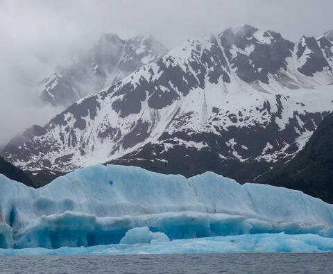 Alaska, Alaskan, Bear Glacier Lagoon, Kenai Fjords, Kenai Peninsula, National Park, fiord, fiords, parkland, parklands, seward...