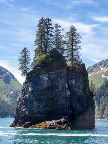 Alaska, Alaskan, Kenai Fjords, Kenai Peninsula, National Park, fiord, fiords, parkland, parklands, seward, summer, summers