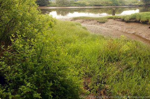 Canoe Landing Lewis & Clark River