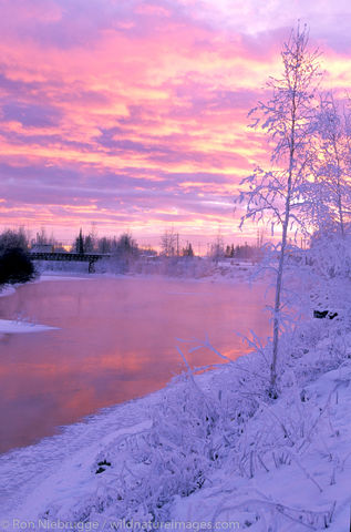 Chena River Winter Sunset