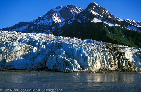 AK, Alaska, Alaskan, Americas, Child's Glacier, Chugach, Chugach National Forest, Copper River, Cordova, National, North America...