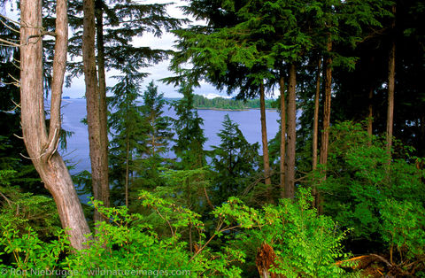 Tongass National Forest with Sitka Sound