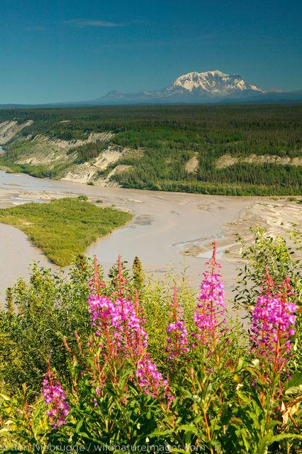 Copper River