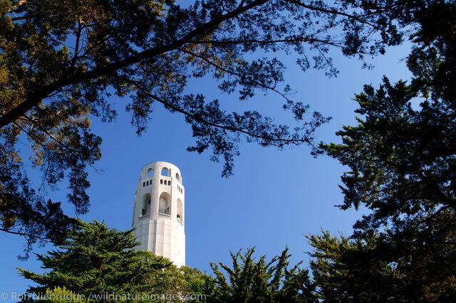 Colt Tower