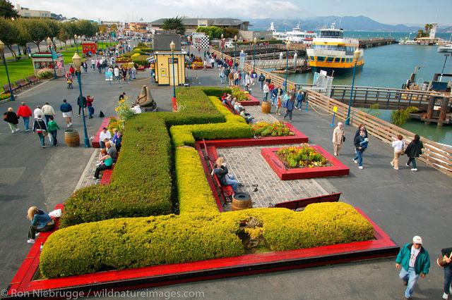 Pier 39 and Fisherman's Wharf
