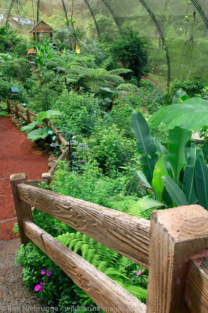 Butterfly Garden at the Peace Lodge