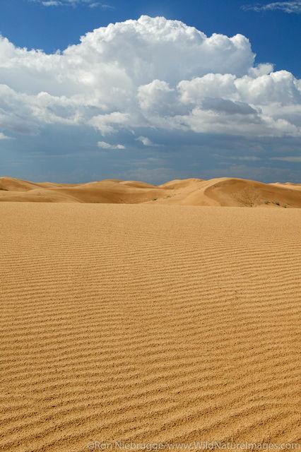 Imperial Sand Dunes Recreation Area