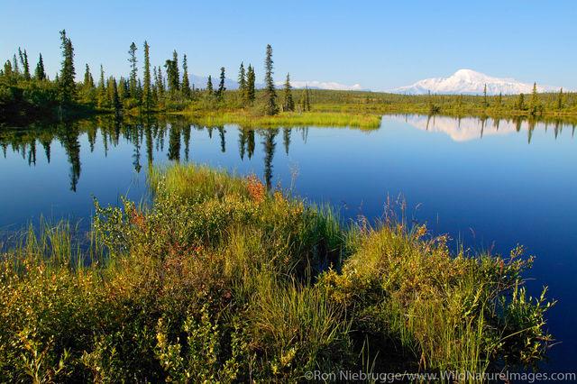 Wrangell -St Elias National Park