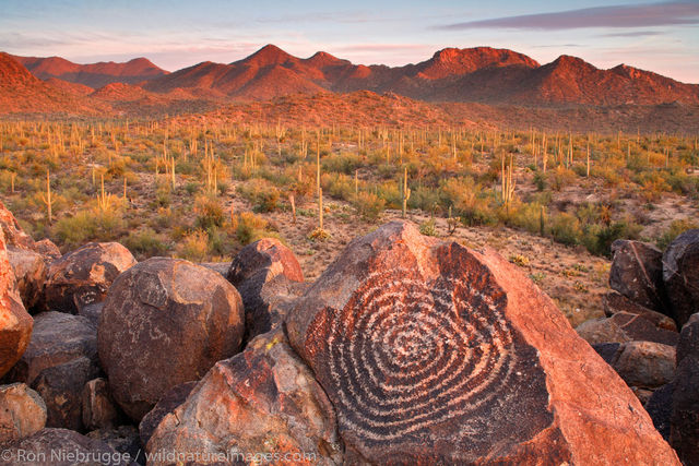 Saguaro National Park, Tucson, Arizona, rock art