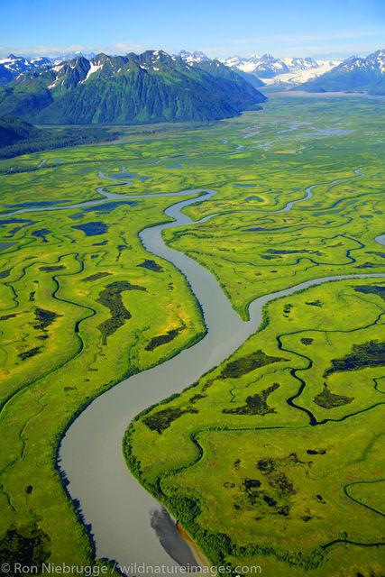 Chugach National Forest, Alaska Chugach, Copper River Delta