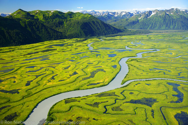 Chugach National Forest, Alaska Chugach, Copper River Delta