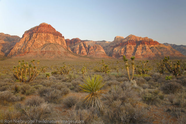 Red Rock Canyon, Las Vegas, Nevada, National Conservation Area, photos