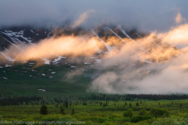 Tatshenshini-Alsek Wilderness Provincial Park