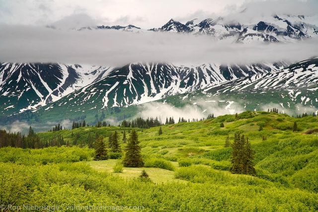 Yukon and Northern BC
