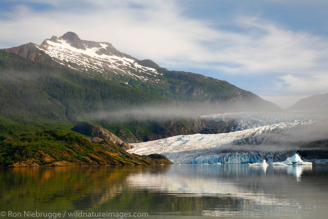 Tongass National Forest, Inside Passage, Alaska, Mendenhall Glacier