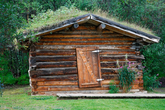 The Jack London cabin