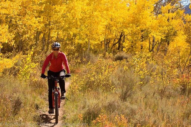 Moutain biking, Bridger-Teton National Forest