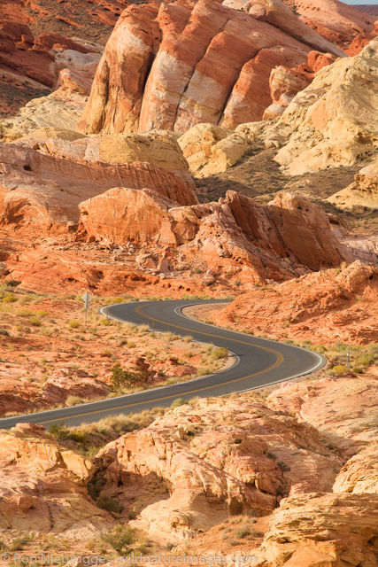 Road in Valley of Fire State Park, Nevada