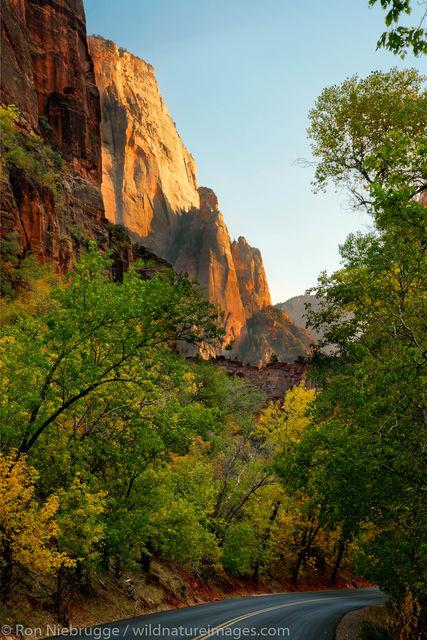 Park Road, Zion National Park
