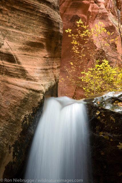 Slot canyon near Zion.