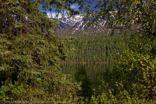 Byers Lake