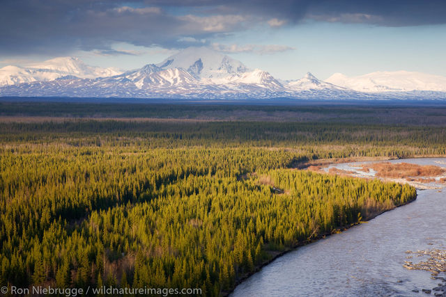 Mount Drum and the Copper River