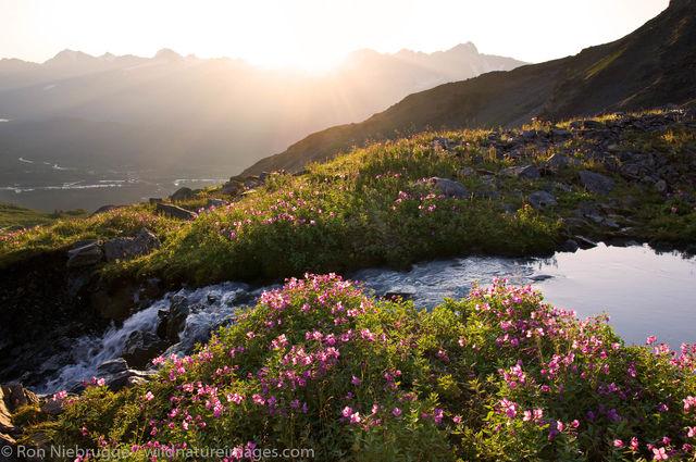 Kenai Peninsula, Alaska,